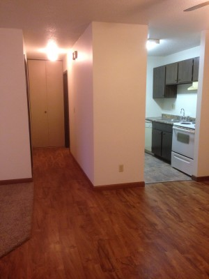 Apartment For Rent In Litchfield, MN