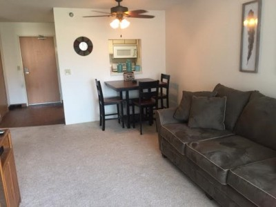 One Bedroom Negotiable Lease Terms In Rochester 1 Bedroom Apartment 12458